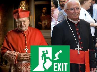 exit kardinalen