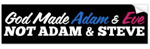 adam&steve