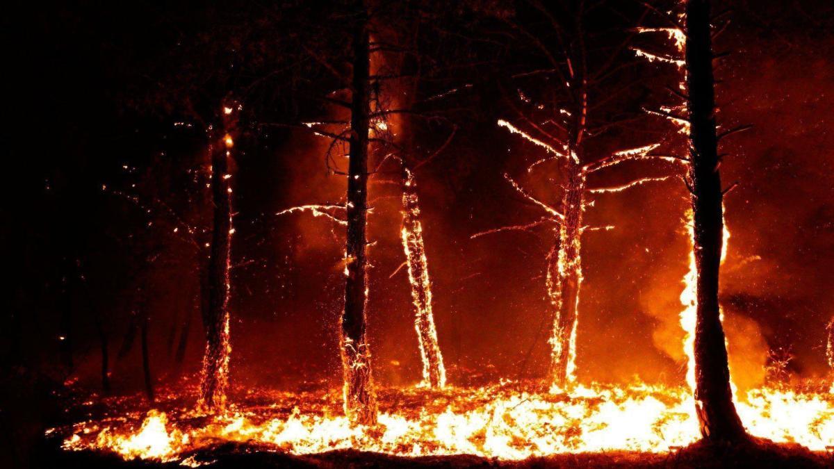 """Extreme droogte in de Lage landen: was de oranje """"saharazand- en bosbrand-zon"""" van oktober een voorteken?"""